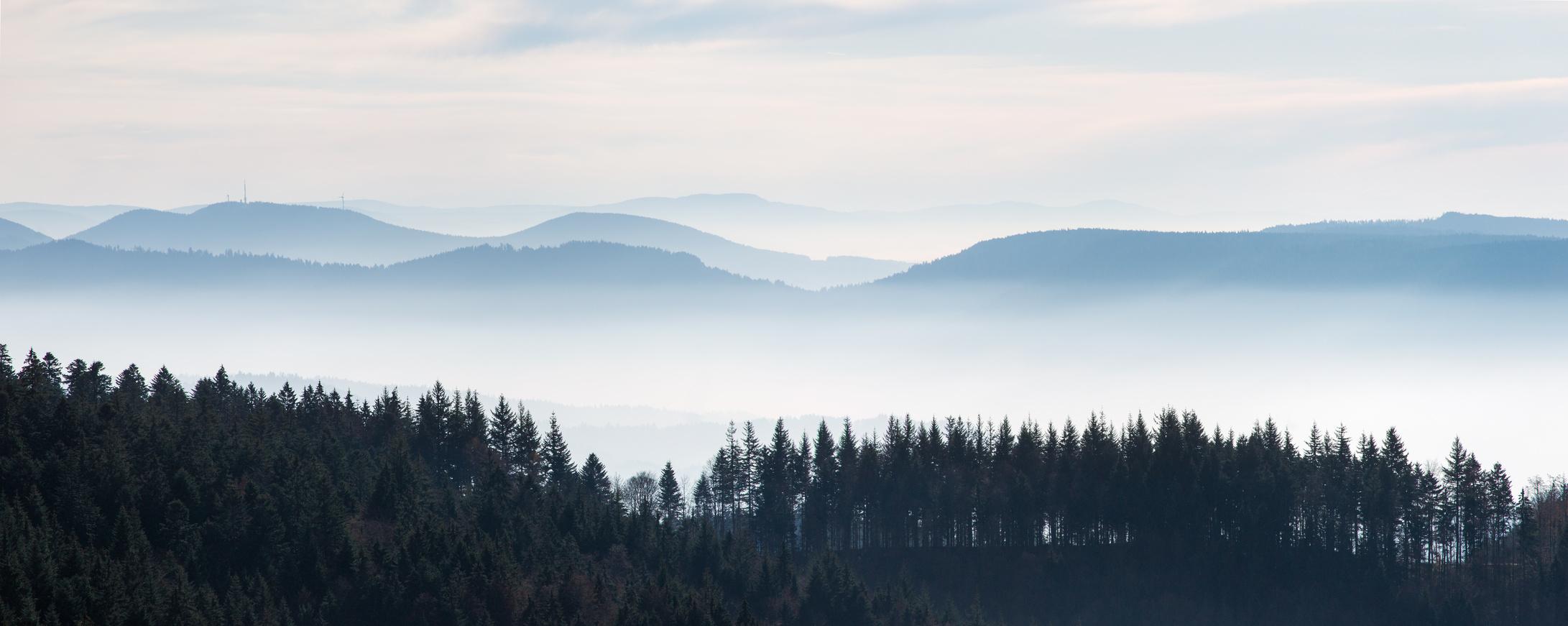 schwarzwaldhoehen-blick-vom-schliffkopf